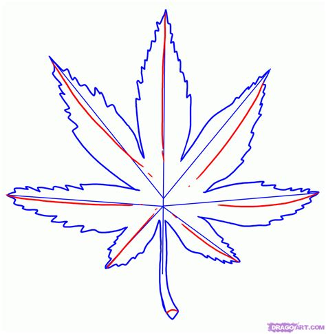 Drawing Leaves by Step 4 How To Draw A Leaf Marijuana