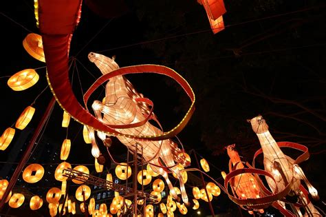 new year lantern festival chicago chicago gears up for the year of the
