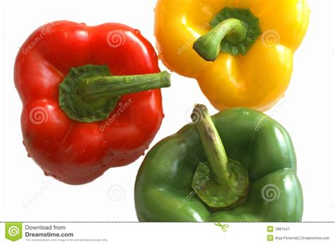 colored peppers colored peppers royalty free stock photography image