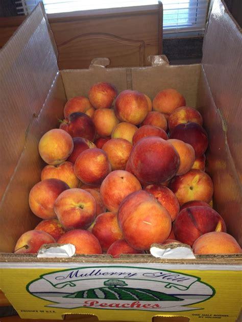 Amish peaches amish pinterest