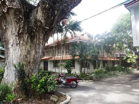 Silliman Mba by Negros Strolling Around Silliman And