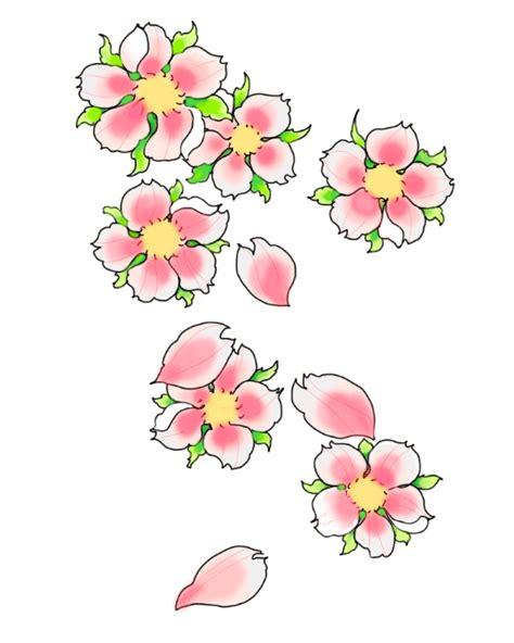 fiori di pesco disegno fiori di pesco pictures to pin on tattooskid