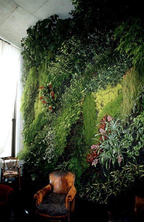 images  living walls  pinterest moss