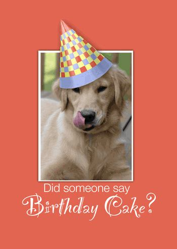 happy birthday puppy gif happy birthday golden free pets ecards greeting cards 123 greetings