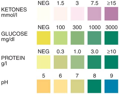 3 protein in urine what does it urine analysis test precision laboratories