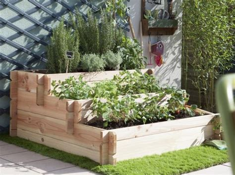petits potagers 16 solutions faciles fruit