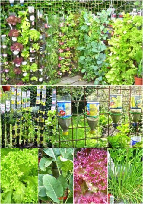 diy bottle tower gardens for vertical garden crops