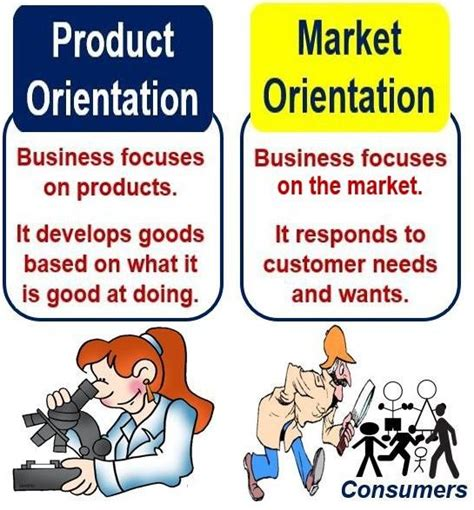 Market Orientation what is market orientation definition and meaning