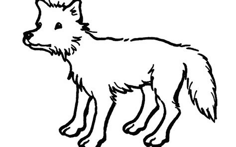 Outline Drawings Of Animals by Farm Animal Outlines Clipart Best