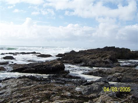 zip code lincoln city oregon lincoln city or tide pools photo picture image