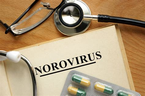Small Vacation Home Plans Norovirus What You Need To Know Cruise Critic