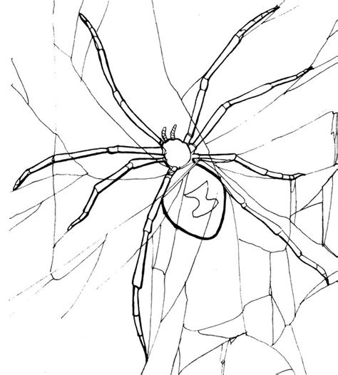 coloring pages black widow spider black widow spider coloring page creativetherapytools