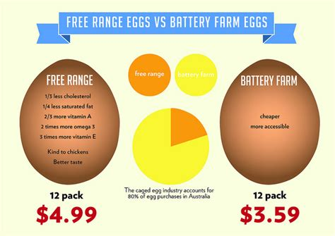 the health benefits of organic eggs 10 key health benefits of eggs