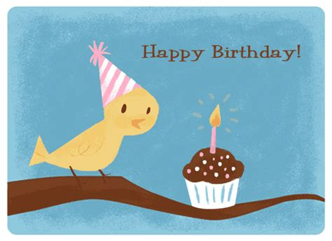happy birthday bird images everyone say happy birthday to mariel today badbirdz