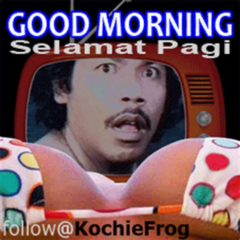 dp bbm good morning bh ngakak kocak kochie frog