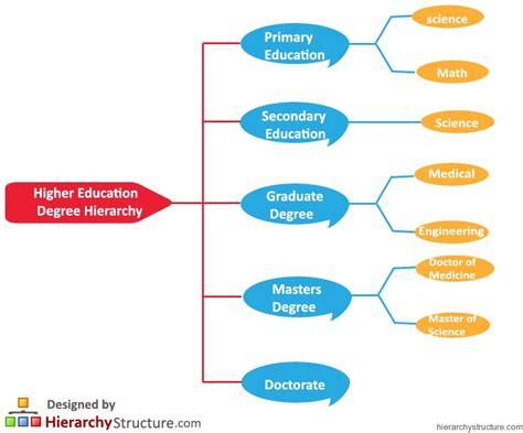 Can I Study Mba Without A Degree by Higher Education Degree Hierarchy Hierarchy Structure