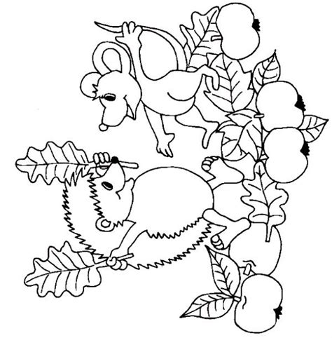free printable fall themed coloring pages theme autumn coloring pages juf milou