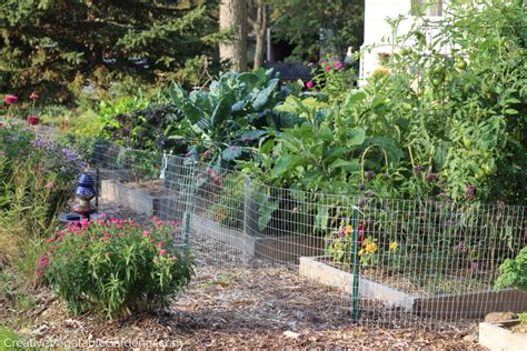 creative vegetable gardens creative vegetable gardener i see what you can do better