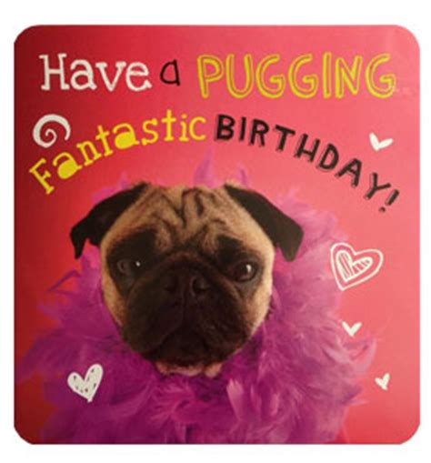 pug birthday ecard puggin pug birthday card i pugs