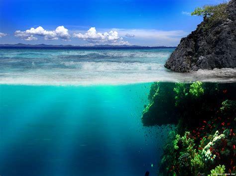 imagenes asombrosas del oceano arriba y abajo del oc 233 ano
