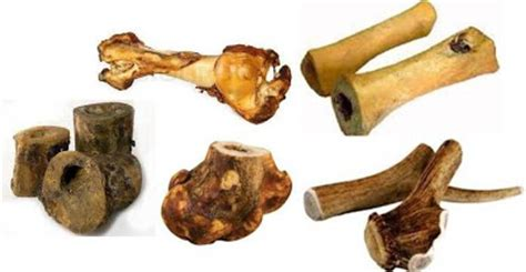 safe bones for dogs ottawa valley whisperer how to select safe effective teeth cleaning chews