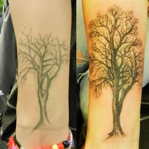 elm city tattoo 55 best trees images on plants elm tree and
