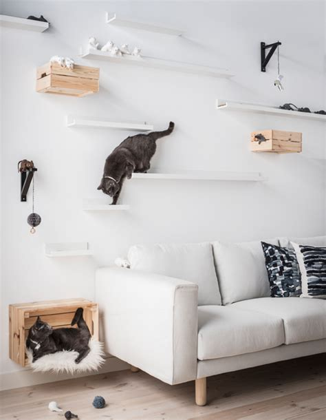 two cats hanging out on diy cat shelves made using ikea