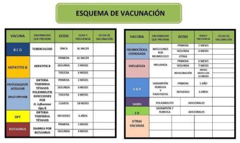 manual de vacunacion 2016 importante completar esquema de vacunaci 211 n para prevenir