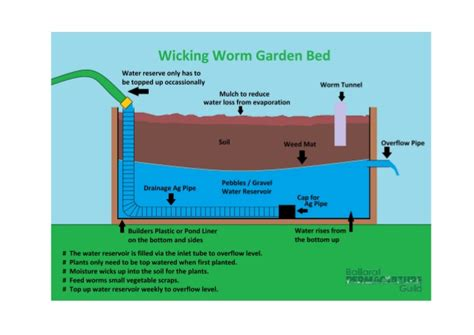 worm bed wicking bed worms images