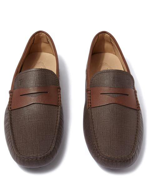 tod s brown saffiano leather driver shoes in brown
