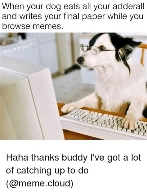 Thanks Buddy Meme - when your dog eats all your adderall and writes your final
