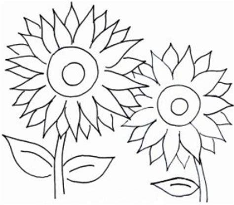 Bunga Jalar Hitam 02 gambar bunga kartun hitam putih mewarnai bunga matahari