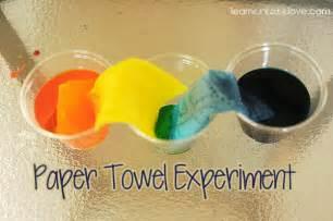 fun paper towel experiment