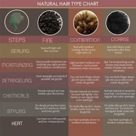 Hair Types And Care by Black Hair Care And Maintenance Resources Hair Charts
