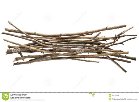 and sticj sticks and twigs royalty free stock images image 20278049