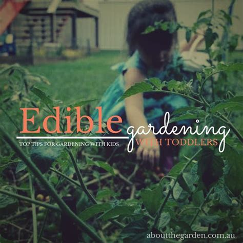 Vegetable Edible Gardening With Toddlers Top Tips For Vegetable Gardening Magazine