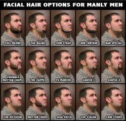 different ways to style chin length hair your guide to types of beard styles popular beard styles
