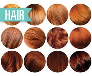 reddish brown hair color chart hair shades chart brown hairs