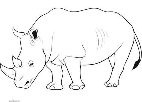 imagenes para colorear rinoceronte dibujos de rinocerontes para colorear