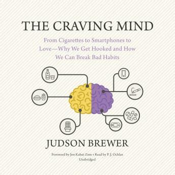 the craving mind from cigarettes to smartphones to ã why we get hooked and how we can bad habits books listen to craving mind from cigarettes to smartphones to