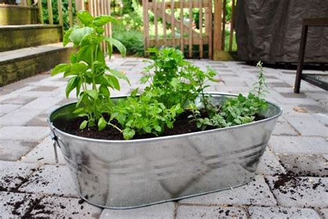 Apartment Patio Tubs 25 Best Ideas About Patio Herb Gardens On Box