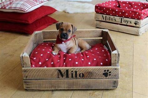 hacer camas c 243 mo hacer camas para mascotas