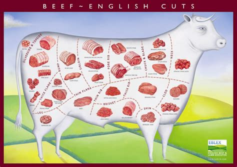 cuts of beef guide morley butchers