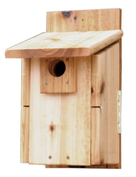 western bluebird house plans how to build a bluebird house bluebird nest box plans
