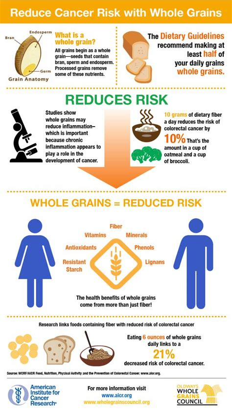 whole grains and cancer infographics the whole grains council