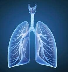 histamine challenge test bronchial responsiveness in children exposed to