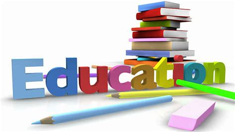 How Many Years Of Opt After Mba by Which Courses You Need To Opt For After Completion Of Your