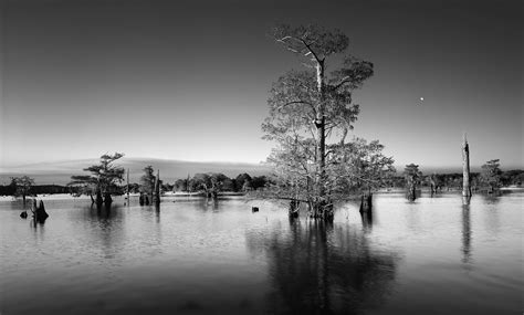 free wallpaper black and white photography black and white landscape photography 32 free hd wallpaper