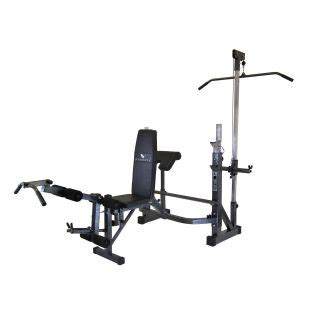 gold s gym pro series weight bench body ch olympic weight bench with arm curl explore on
