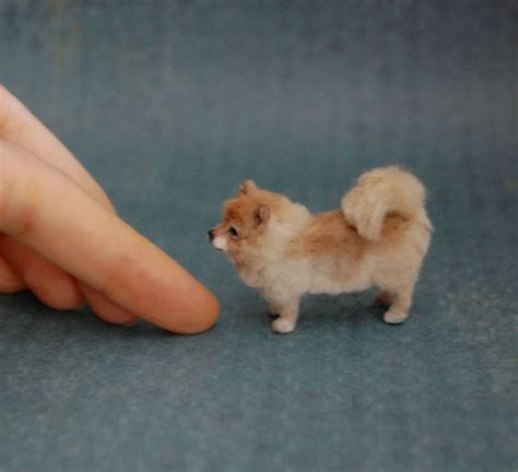 mini pomeranian puppies ooak realistic pomeranian dollhouse miniature 1 12 handmade sculpture real